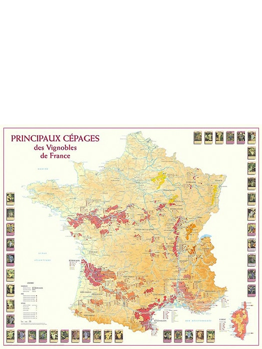 Wine map The main varieties of grapes in the French vineyards